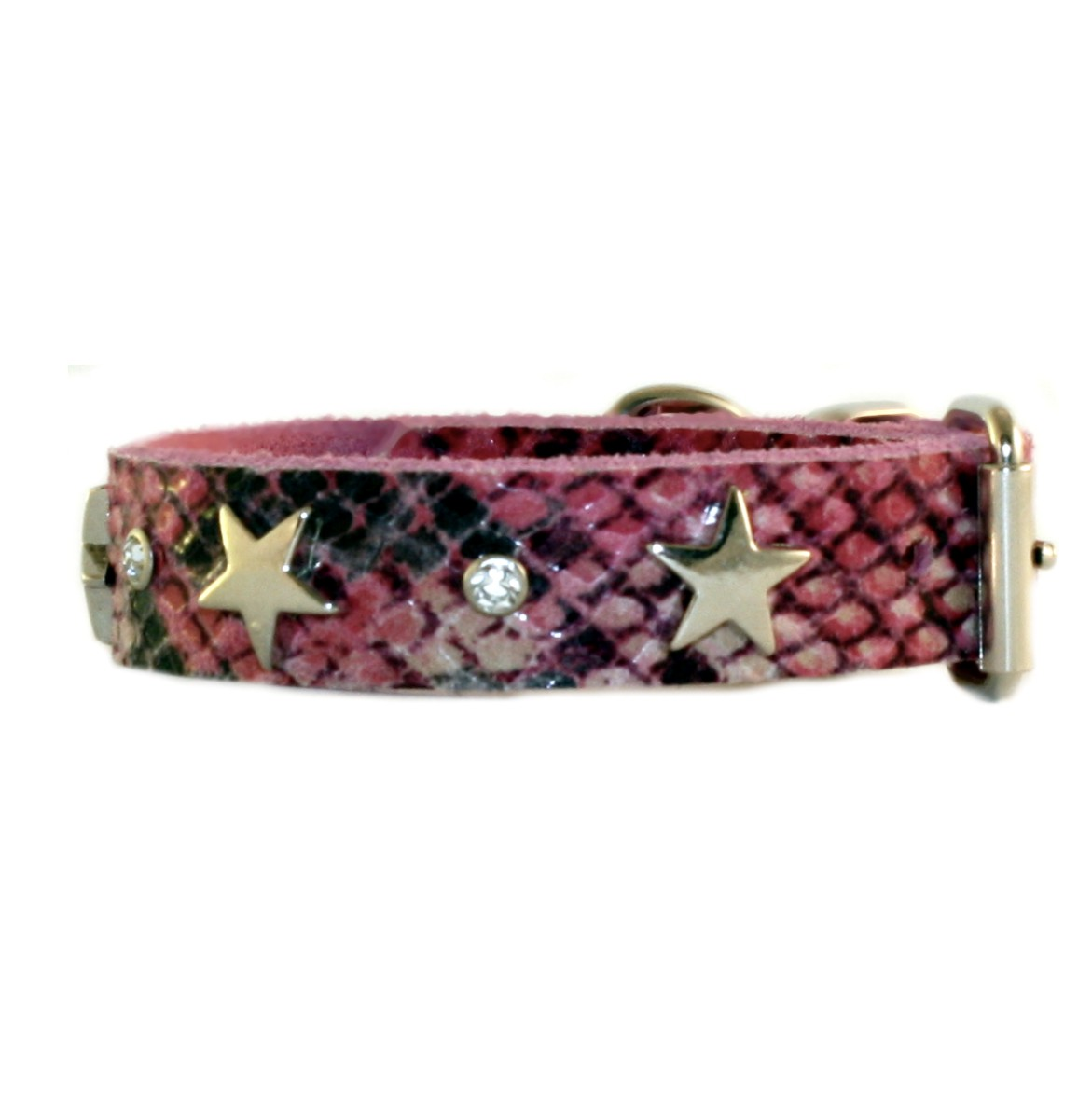 Halsband Snake & Löwen ONLY small/medium  Dogs