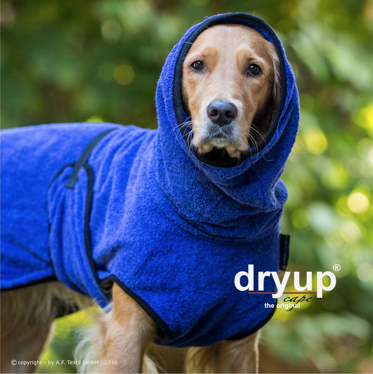 Hundebademantel Dryup Cape blueberry